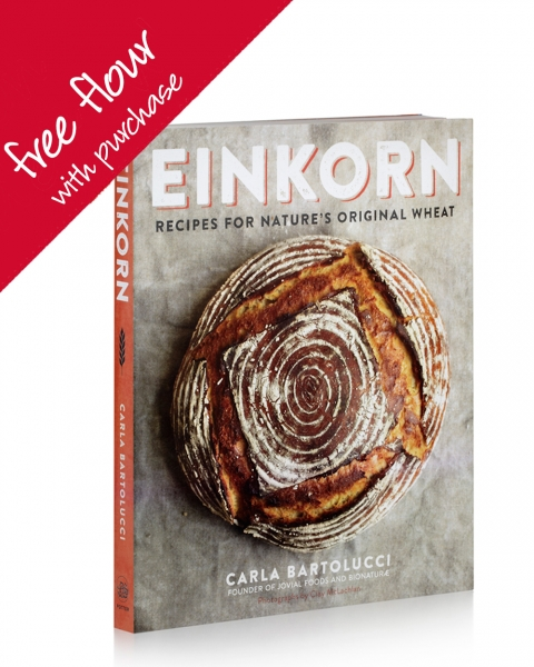 cookbook-free-flour