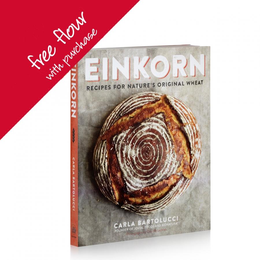 cookbook-free-flour