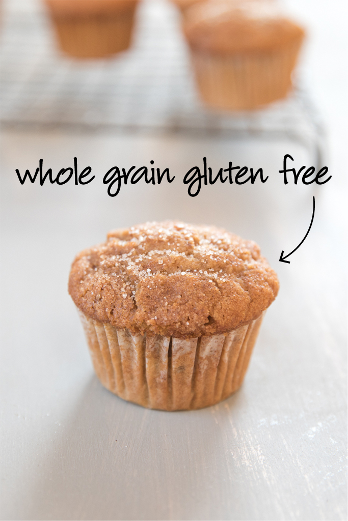 Gluten Free Spiced Apple, Walnut & Raisin Muffins | Jovial ...